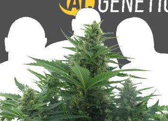 Over Ons > AC Genetics