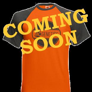 T-Shirt \'Original\'